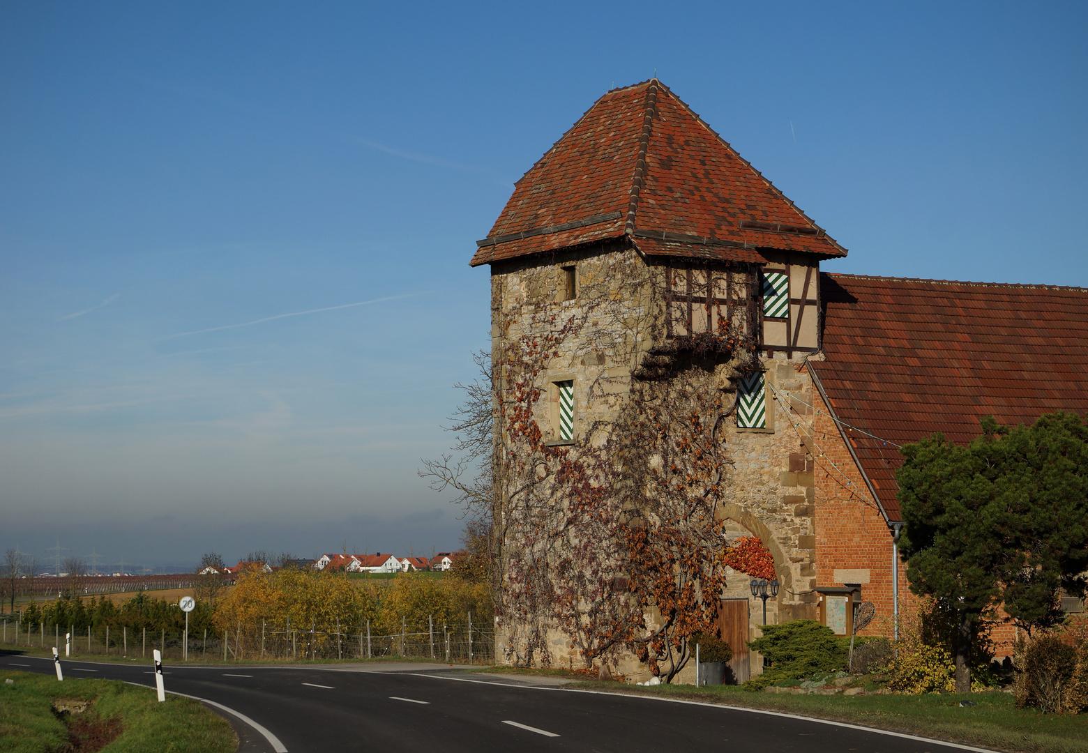 Landturm in Lauffen/N im Herbstkleid