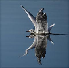 Landung mit Tiefgang