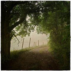 Landwege
