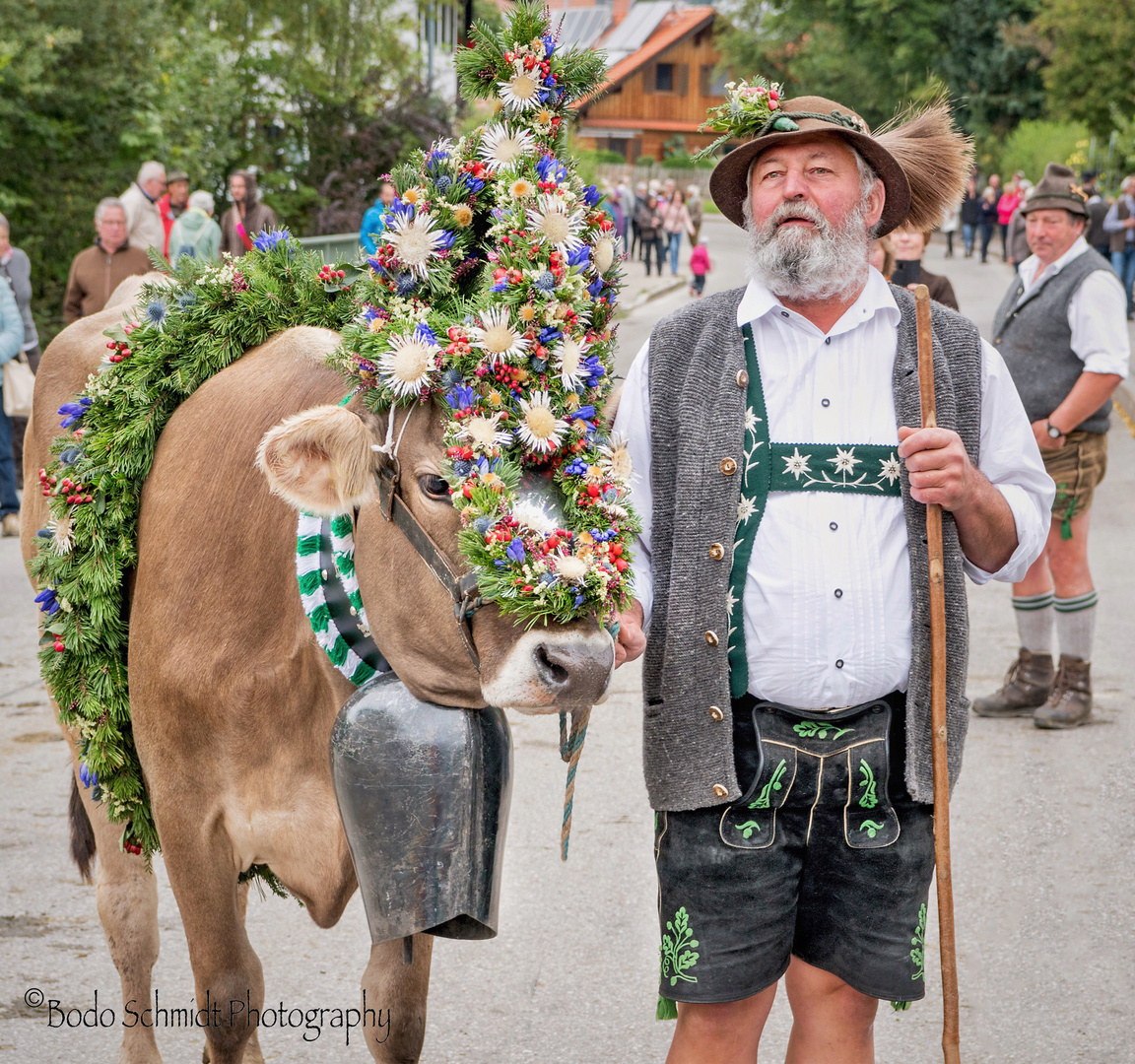 Landwirt mit Kranzkuh bei der Viehscheid in Wertach.