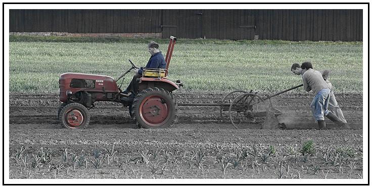 Landwirtschaft...