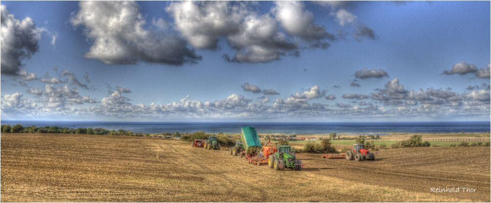 Landwirtschaft an der Ostsee