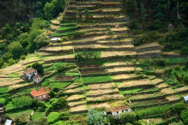 Landwirtschaft auf die harte Tour