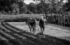 Landwirtschaft in Galicien (E) wie vor Tausende Jahren