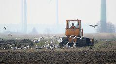 Landwirtschaft wie Straßenbau