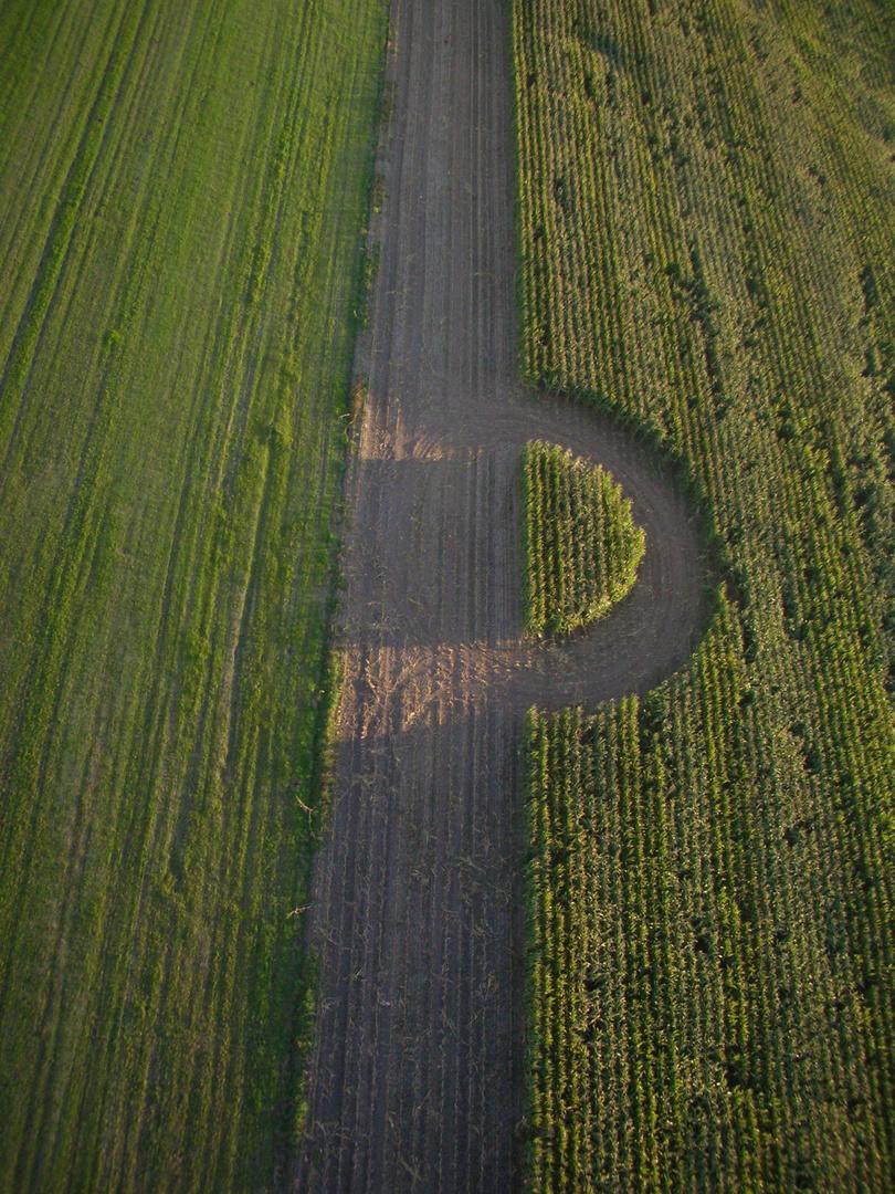 landwirtschaftliches Rätsel