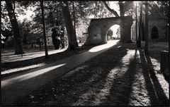 Lange Schatten ...