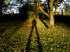...lange Schatten