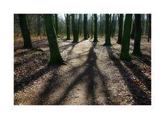< lange Schatten >