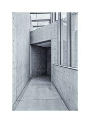 Langen Foundation 2........