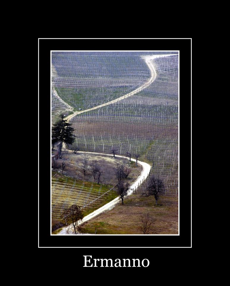 Langhe - la strada -