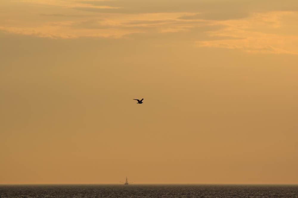 Langstreckenflieger