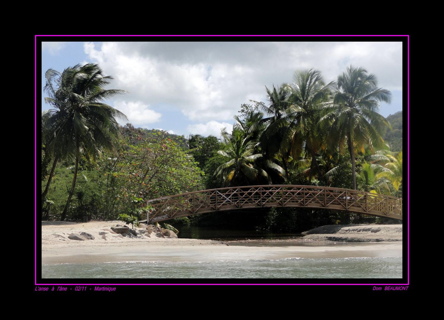 L'Anse à l'âne, février 2011 Martinique