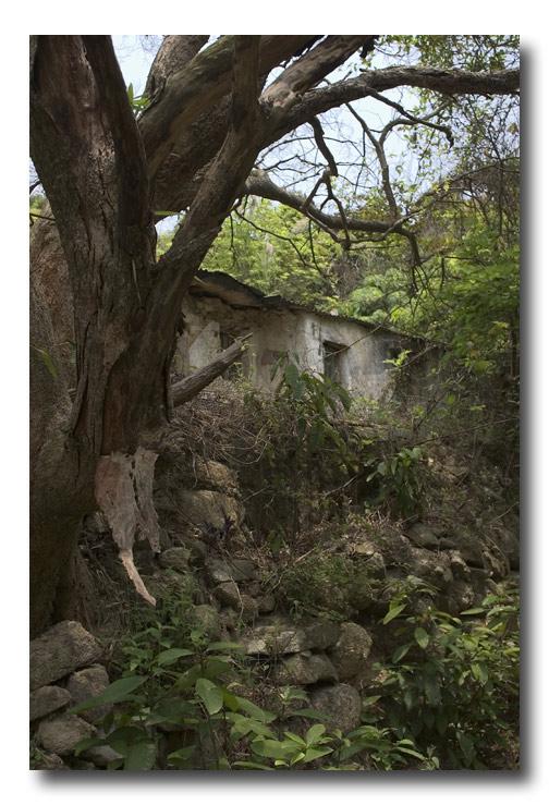 Lantau house