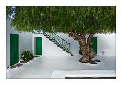 Lanzarote 12