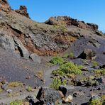 Lanzarote 2019 (22)  -  Im Vulkankrater Caldera del Cuervo