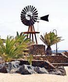 Lanzarote impressionen einer insel 30-15