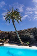 Lanzarote vor der Seuche ... Jameos del Agua (4)