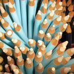Lápis , muitos lápis