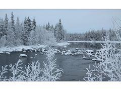 Lapland 2011 (11)