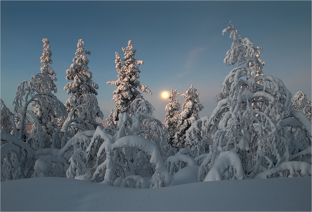 Lapland morgens