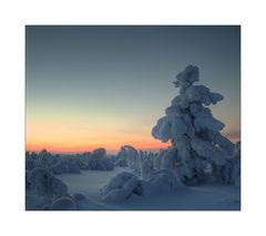 Lapland Winter 2012 (10)