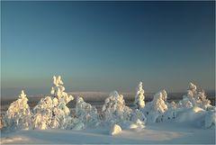 Lapland Winter 2012 (2)
