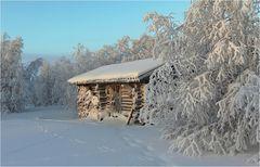 Lapland Winter 2012 (3)