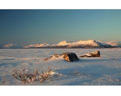 Lapland Winter 2012 (4)