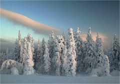 Lapland Winter 2012 (8)