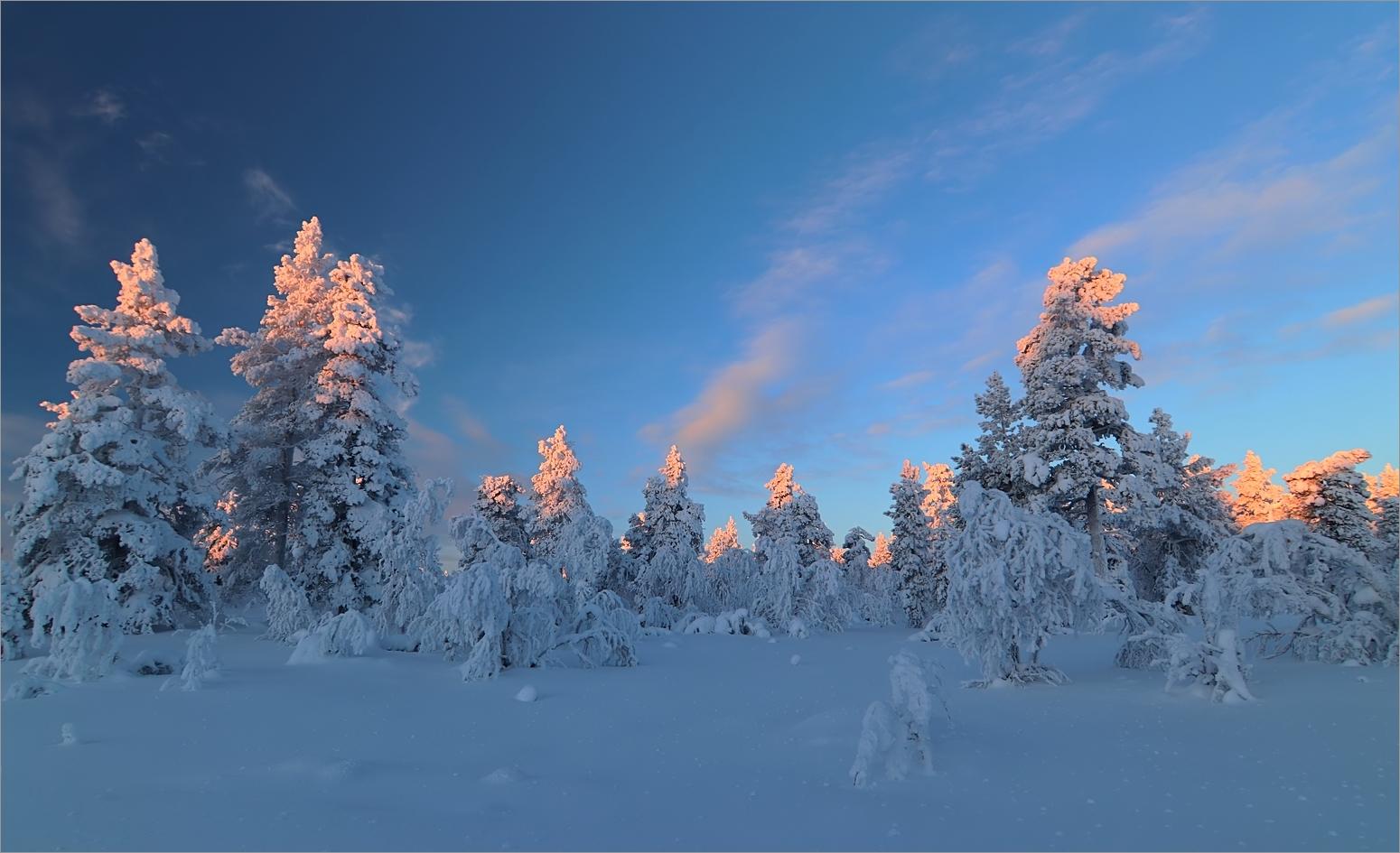 Lapland(Leuchten)