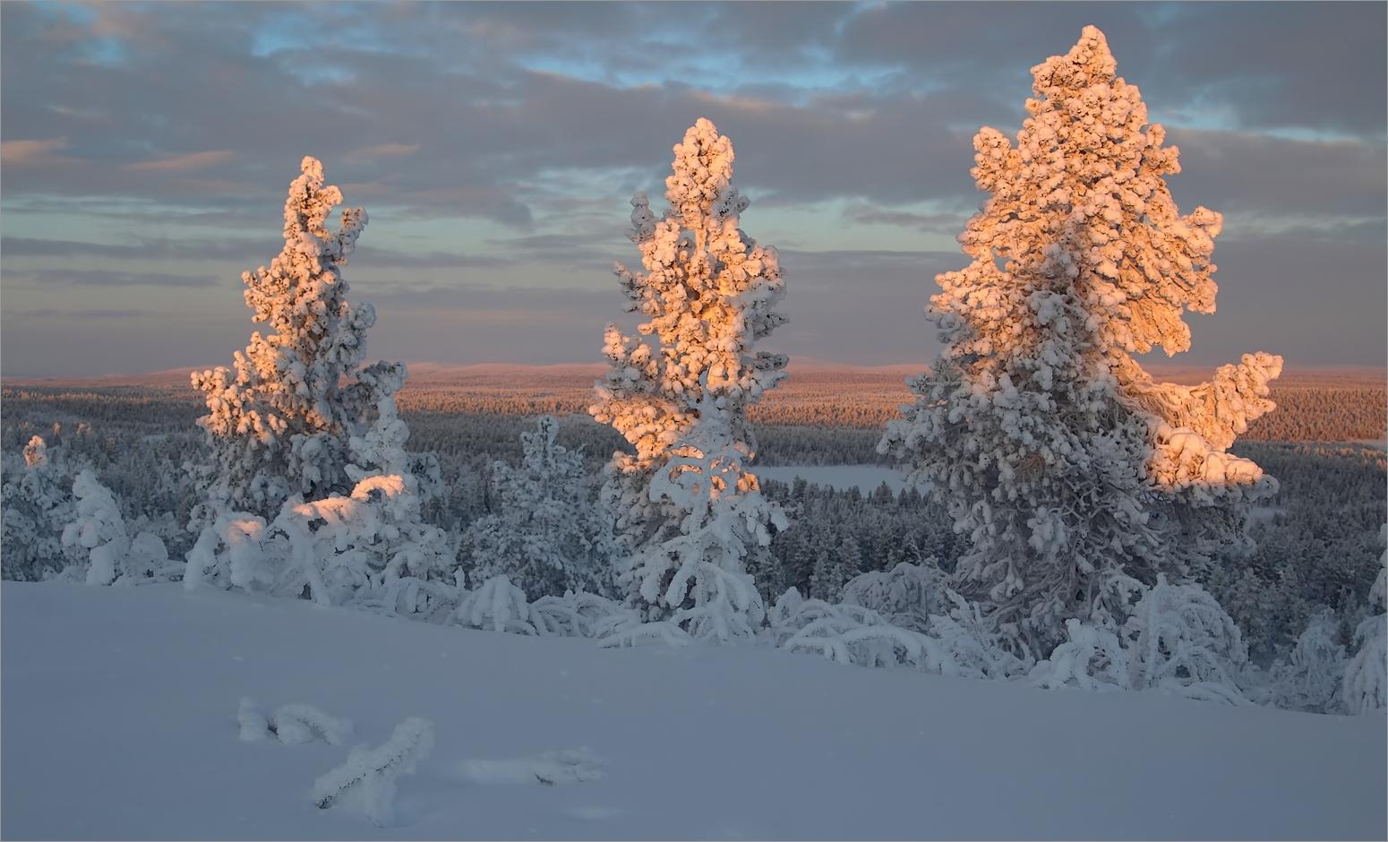 Lappland 2019