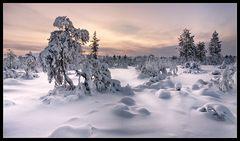 Lappland - Kiilopää II