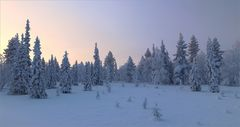 Lappland morgens