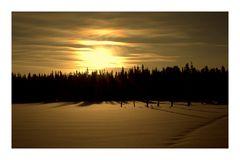 Lappland-Sonne