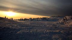 Lappland | Unterwegs auf Hundeschlittentour ......