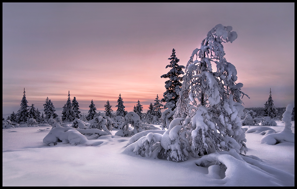 Lappland - Winterwelt