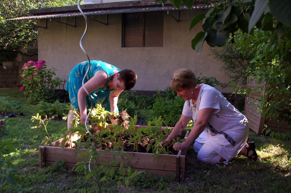 l'Aprentie jardinière ....