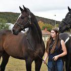 Lara mit ihren Pferden
