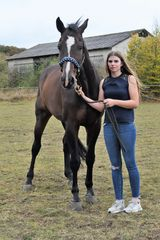 Lara und ihr Pferd Consotho 1
