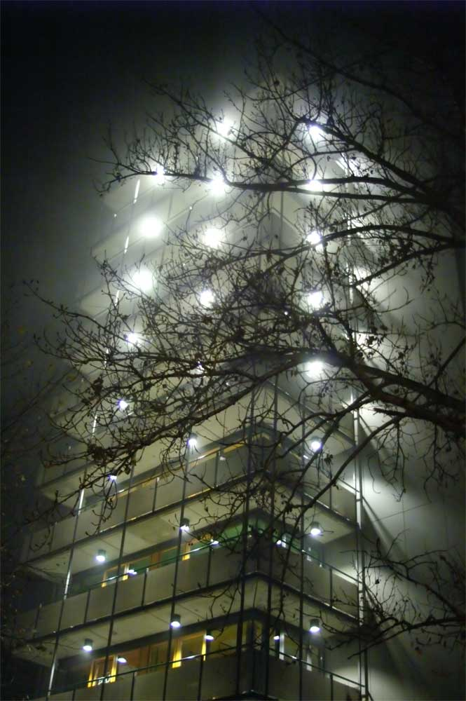 large building in the fog