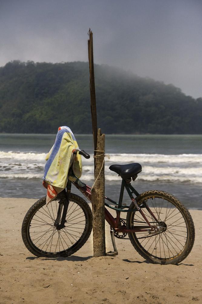 las bicicletas del verano de makarzur