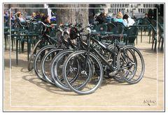 Las Bicicletas son para la Primavera... GKM2