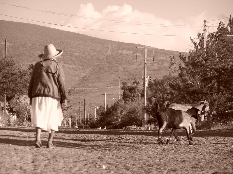 """""""Las Cabras"""""""