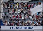 -LAS GOLONDRINAS-
