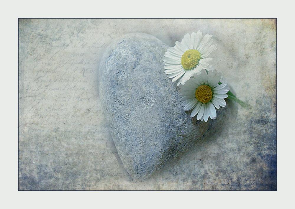 - Lass dein Herz erweichen -