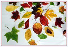 Lass deine Seele im Herbstlaub tanzen,