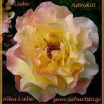 Lass dich heute feiern, liebe Astrid!!!