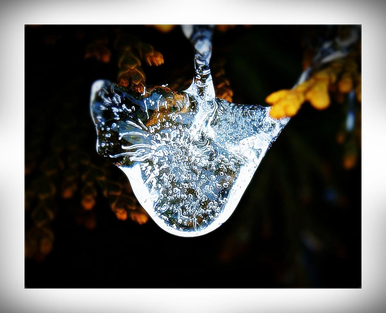 last frozen memories