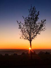 Last Sunset 2016